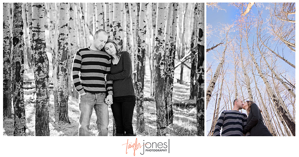Aspen trees engagement shoot