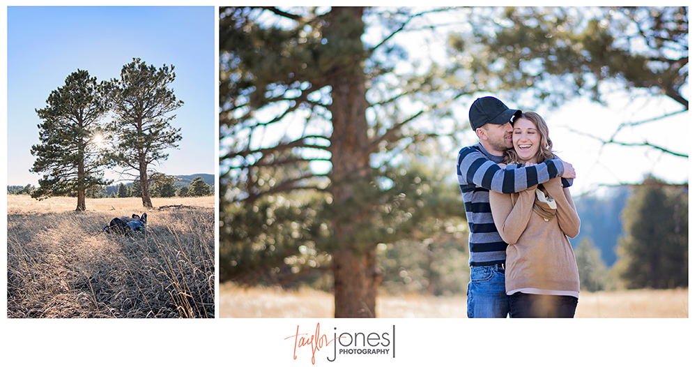 Elk Meadown, Evergreen Colorado photographer,