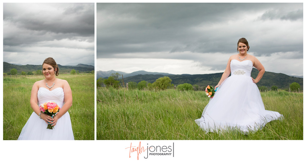 Bridal portraits at the Shupe Homestead in a frield