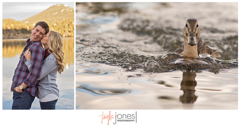 A duck that joined us at the engagement shoot