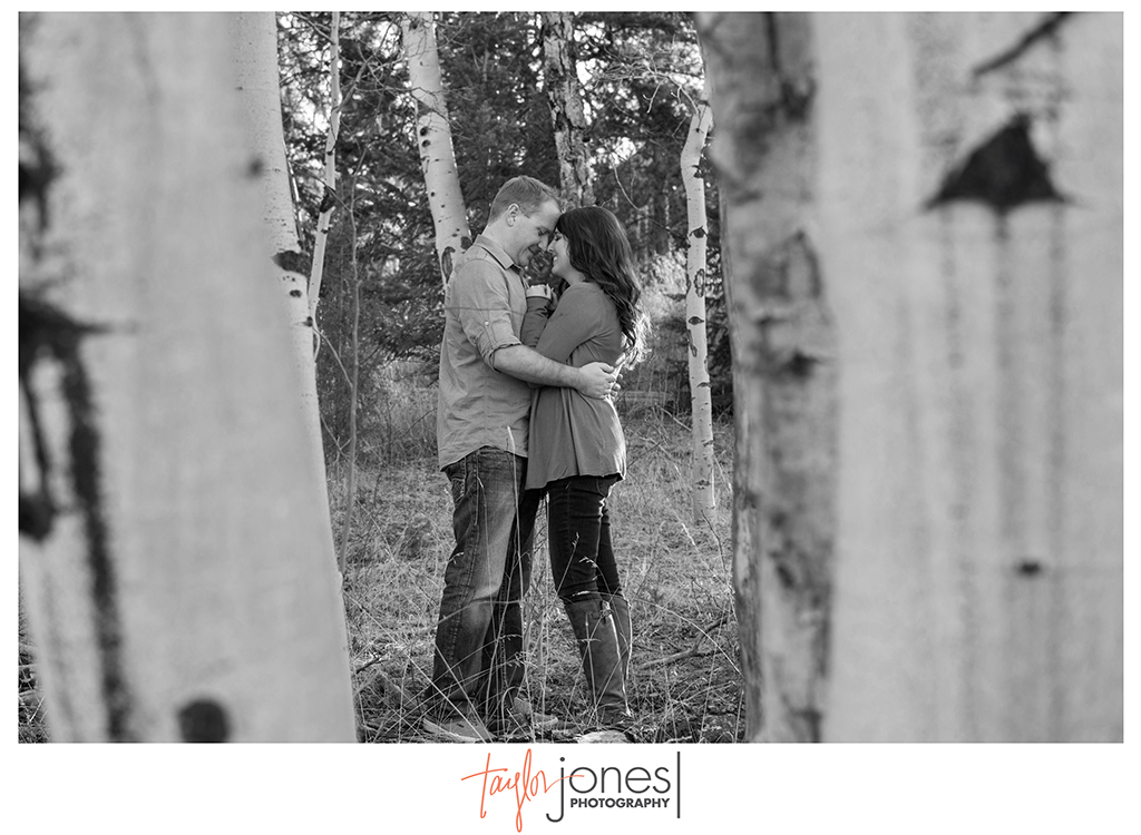 Meyer Ranch engagement shoot in aspens