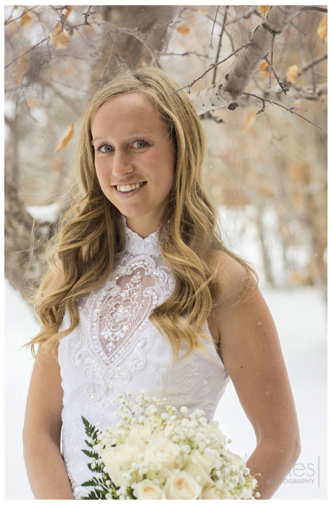 Brittany bridal portraits in snow