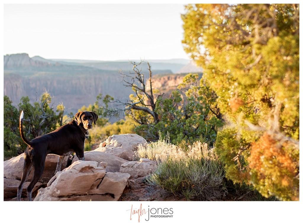 GSP exploring Moab, Utah