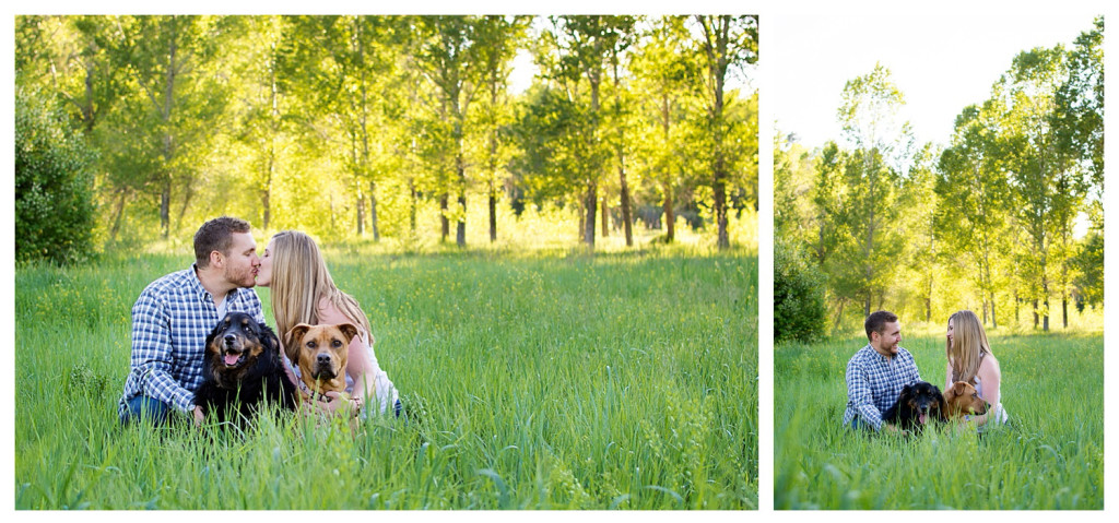 Colorado engagement shoot at Lair O the Bear couple with dogs in field