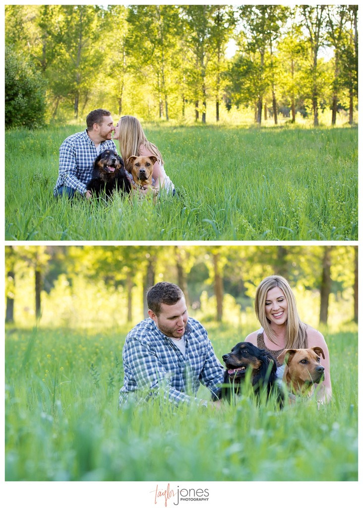Colorado engagement shoot at Lair O the Bear with dogs