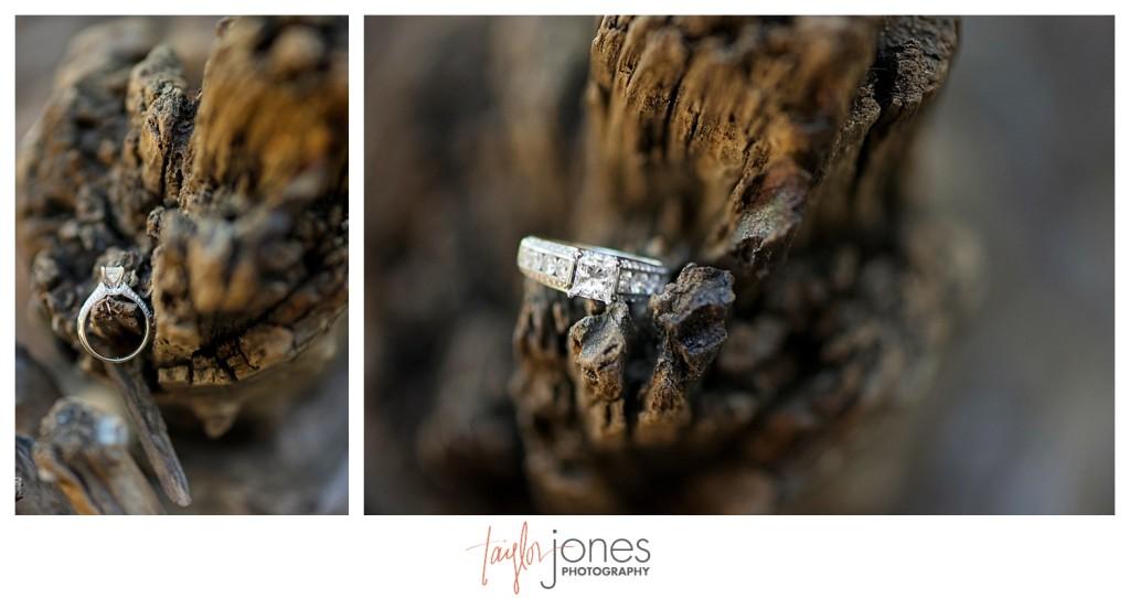 Colorado engagement shoot at Lair O the Bear ring shot