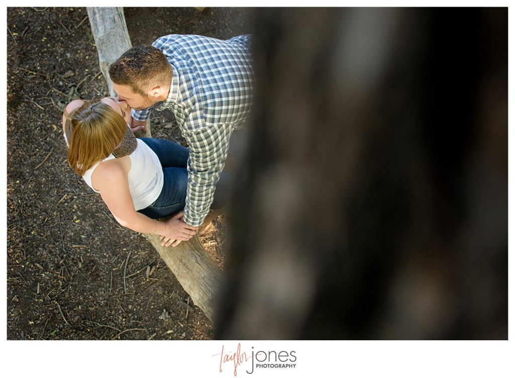 Colorado engagement shoot at Lair O the Bear couple in tree kissing shot from above
