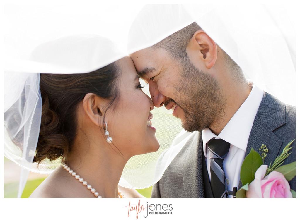 Crested Butte Wedding Photographer bride and groom under veil
