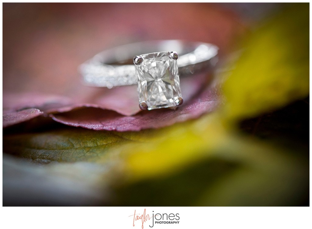 Red Rocks Colorado proposal photographer