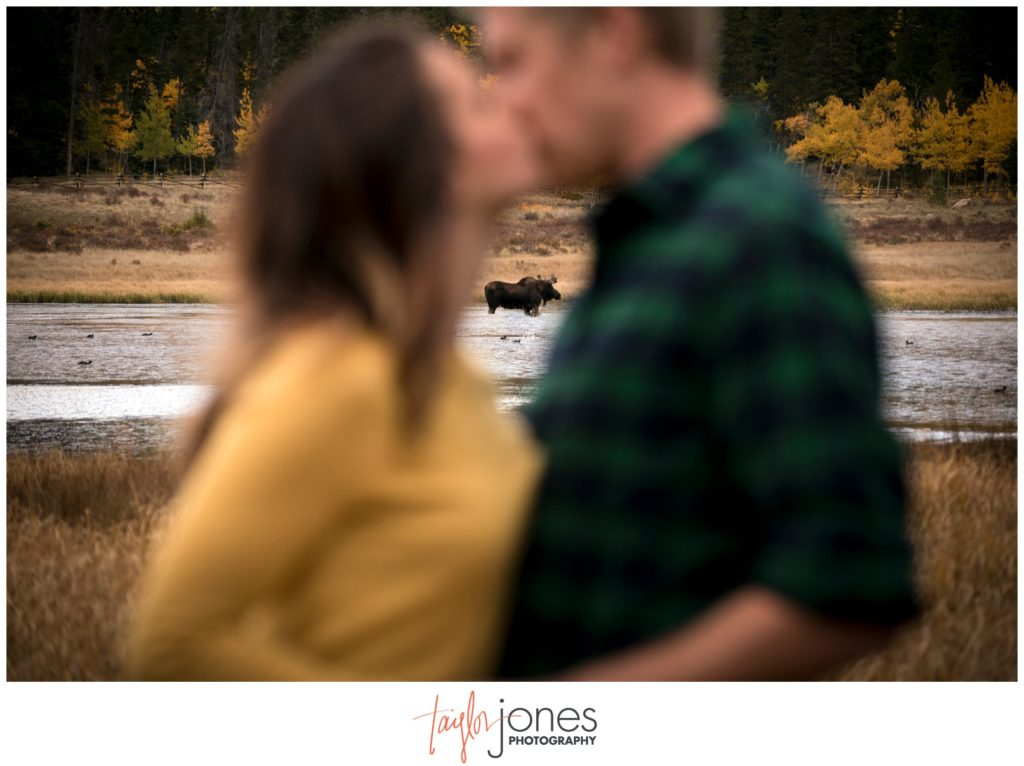 Fall engagement shoot in Colorado at Kenosha Pass with moose engagement photographer