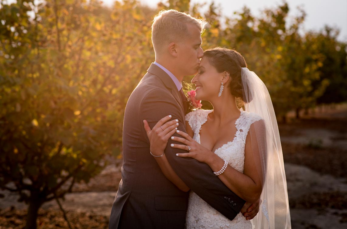 Wedding at Postlewaits Country Weddings in Canby Oregon