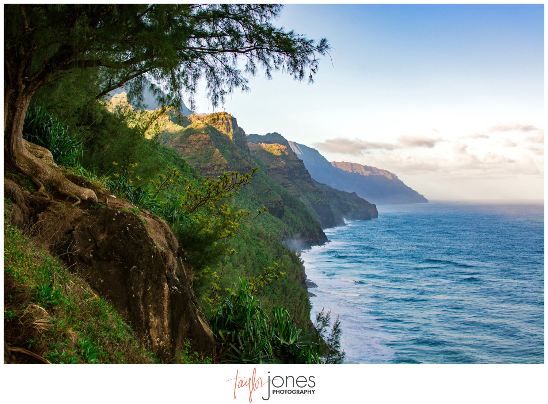 travel destination hawaii fishers take kauai taylor jones photography