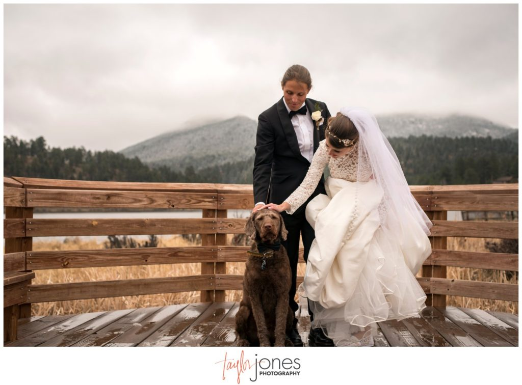 Wedding photos with dog at Evergreen Lake House wedding