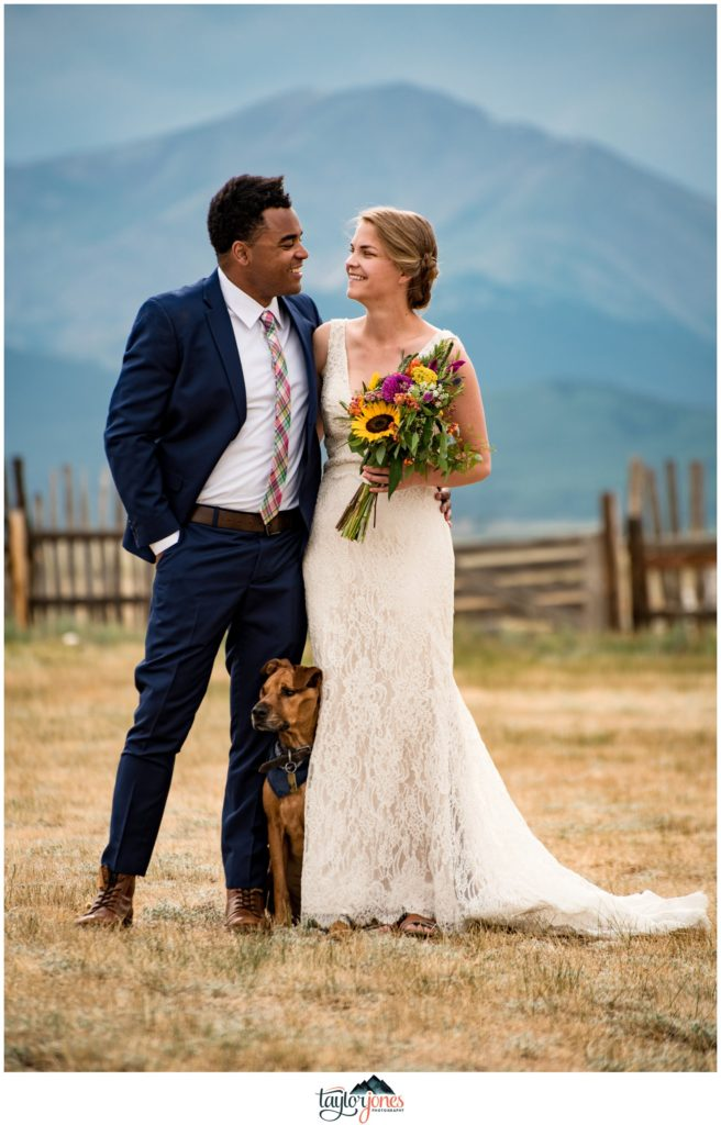 Guyton Ranch wedding bride and groom with dog in Jefferson Colorado